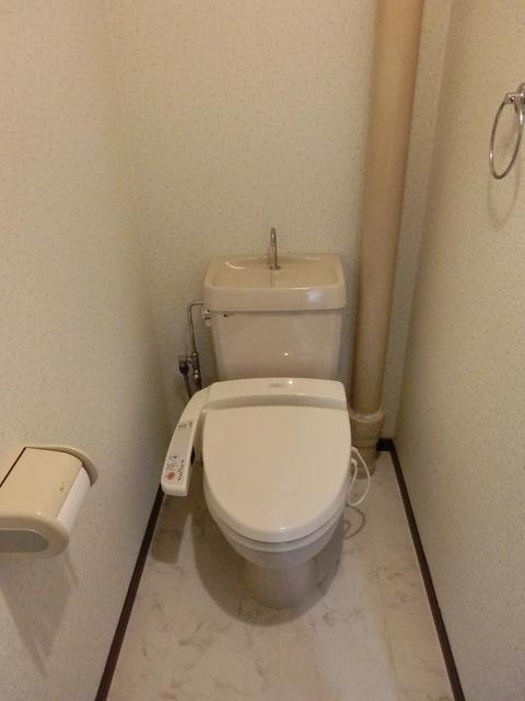 シャトレ壱番館 / 301号室トイレ