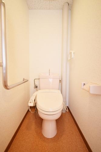 サンハイツ公園通り / 201号室トイレ