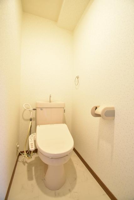 シャトレ天拝 / 206号室トイレ
