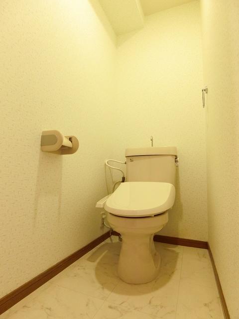 シャトレ天拝 / 605号室トイレ
