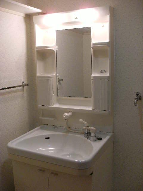 ルミエール'98 / 201号室洗面所