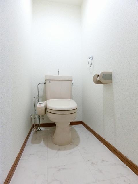 グランドゥール祥雲 / 301号室トイレ