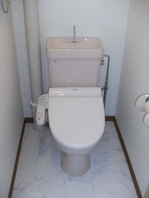 シャトレ壱番館 / 502号室トイレ
