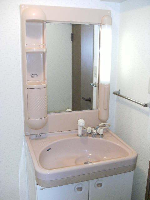 シャトレ針摺Ⅱ / 303号室洗面所