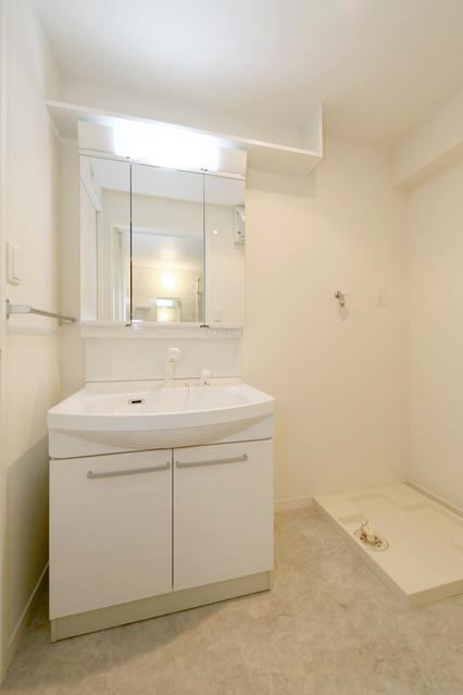 エルマーナⅡ / 401号室洗面所