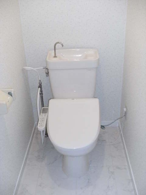 シャトレ針摺 / 302号室トイレ