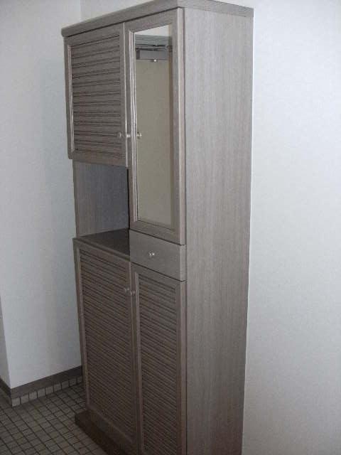 シャトレ針摺Ⅱ / 401号室玄関