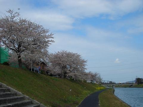休みの日は宝満川沿いでお散歩でもいかがですか♪