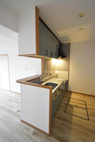 ロイヤルMⅡ / 501号室キッチン