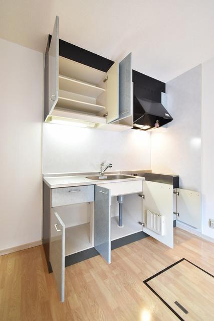 メロディハイツ飯倉 / D4101号室キッチン