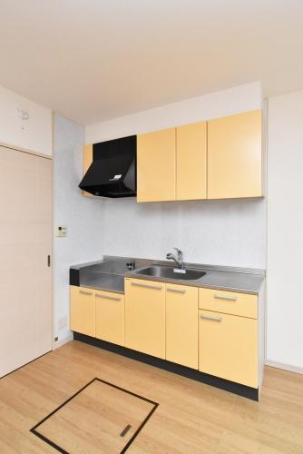 プランドール / 103号室キッチン