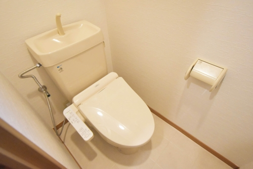 ロイヤルMⅡ / 501号室トイレ