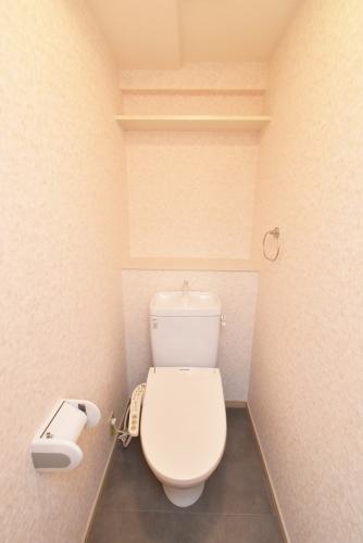 グラン・ブルー和気 / 101号室トイレ
