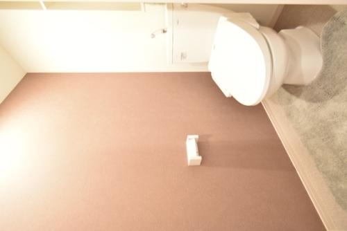 ドゥ・メゾン / 501号室トイレ