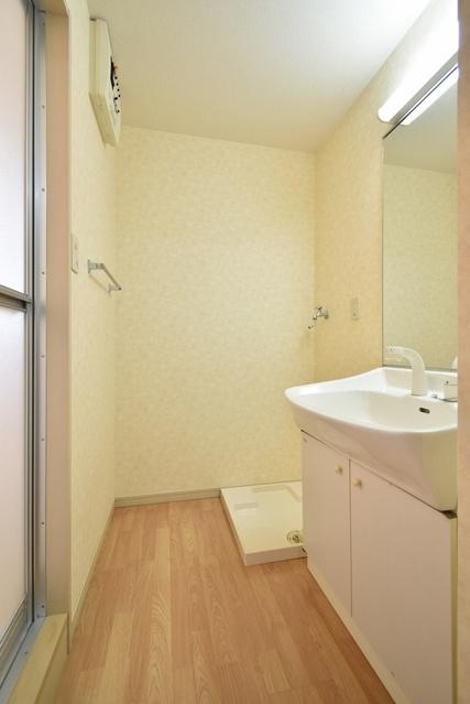 メロディハイツ飯倉 / D4101号室洗面所