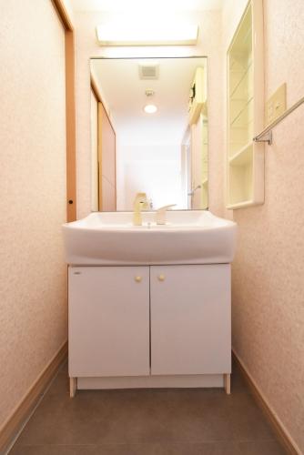 グラン・ブルー和気 / 101号室洗面所