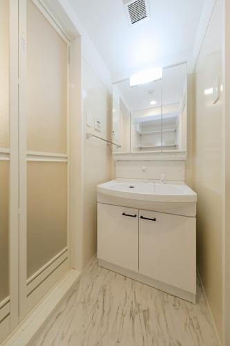 ラ・フェリーチェ室見 / 302号室洗面所