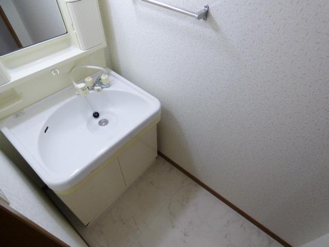 セトルシウダーⅡ / 302号室洗面所
