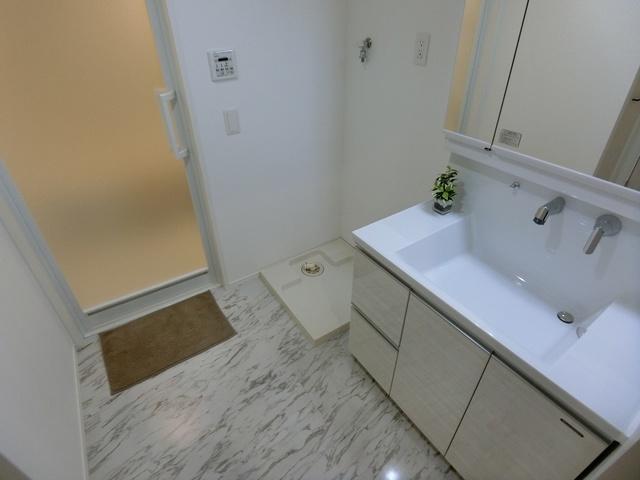 ラフィーネ グラン室見 / 606号室洗面所