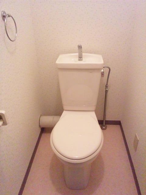 ヴェルロッジヒロタ / 209号室トイレ