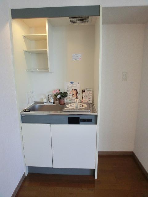ヴェルロッジヒロタ / 303号室キッチン