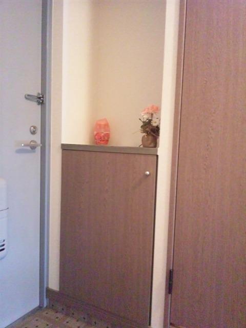 ヴェルロッジヒロタ / 209号室その他