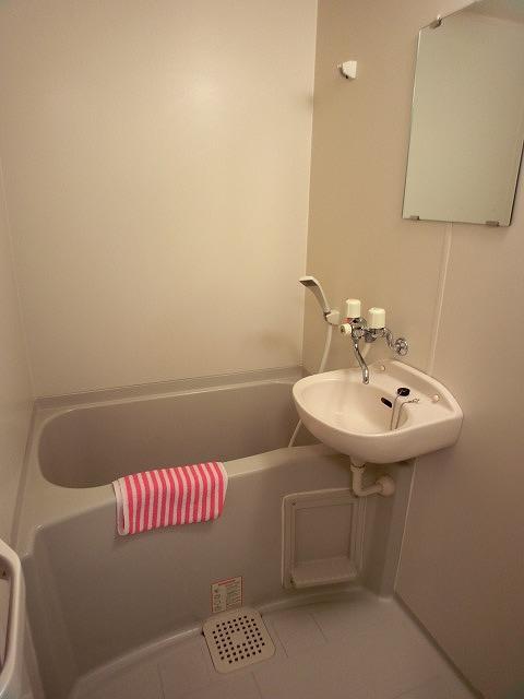 ヴェルロッジヒロタ / 303号室洗面所