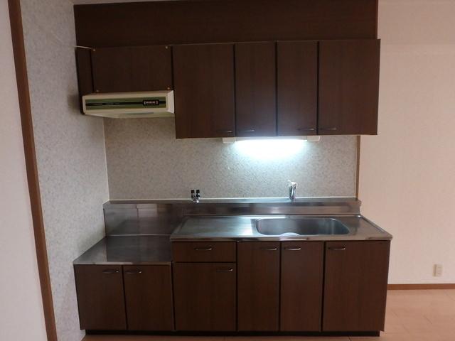 ルミエール東大利 / 103号室キッチン