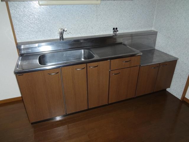 ルミエール東大利 / 201号室キッチン