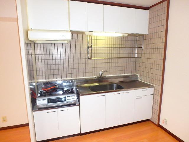 サンハイツ森山 / 302号室キッチン