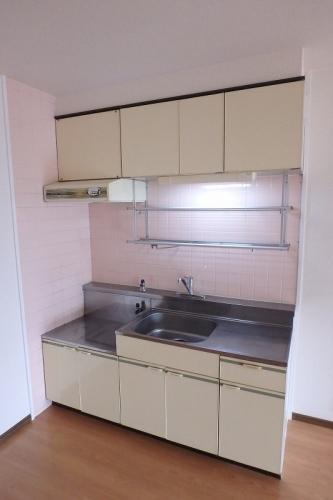 エクセレント中嶋 / 103号室キッチン