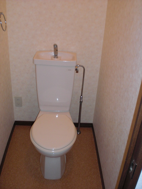 レスピーザⅡ / 207号室トイレ