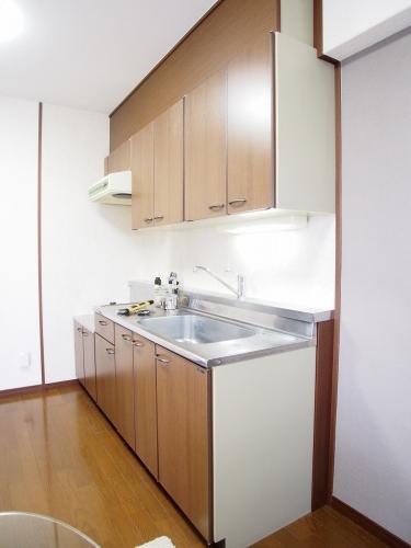 レスピーザⅡ / 207号室キッチン