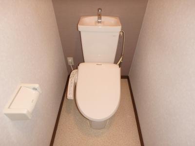 レスピーザⅡ / 208号室トイレ