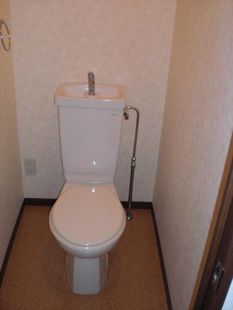 レスピーザⅡ / 307号室トイレ