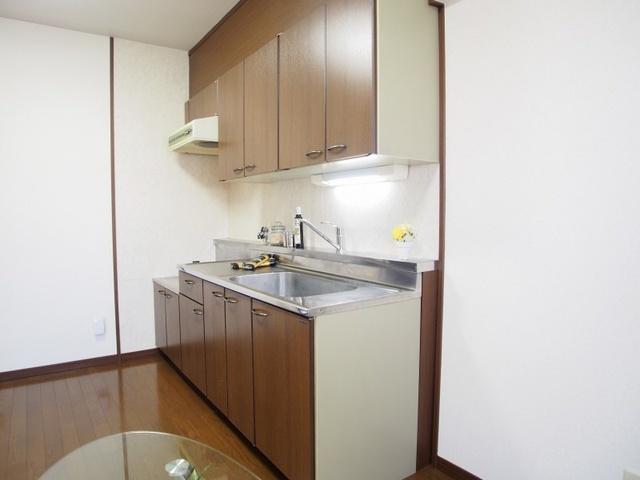 レスピーザⅡ / 308号室キッチン