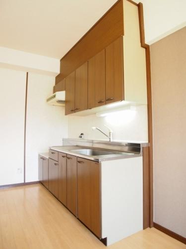 レスピーザⅡ / 406号室キッチン