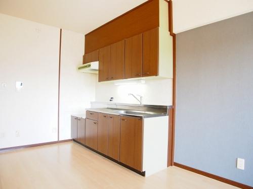 レスピーザⅡ / 503号室キッチン
