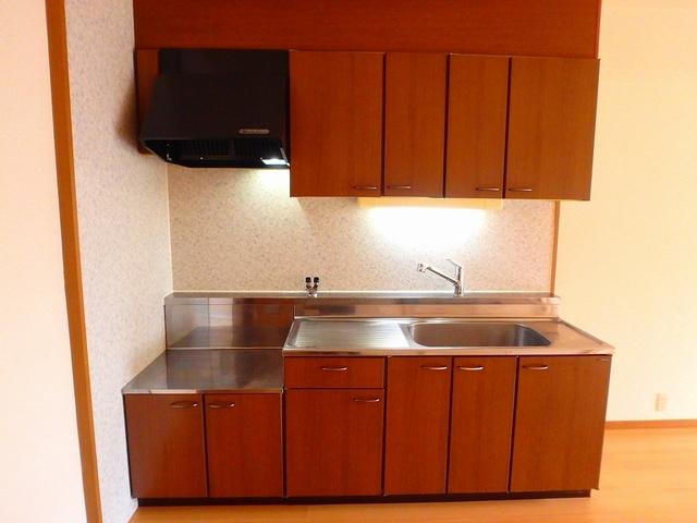 ルミエール東大利 / 303号室キッチン