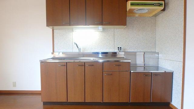 コスモス'95 / 301号室キッチン