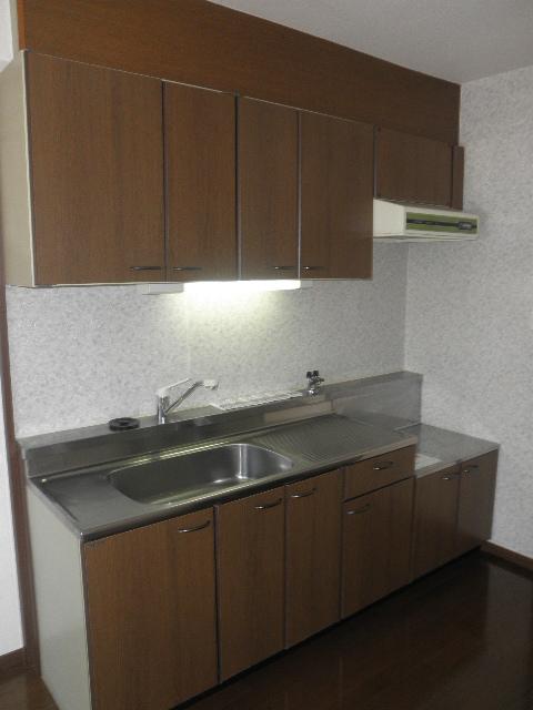クレセント下大利 / 401号室キッチン