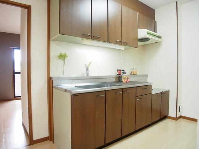 ホワイトヴィラ / 201号室キッチン