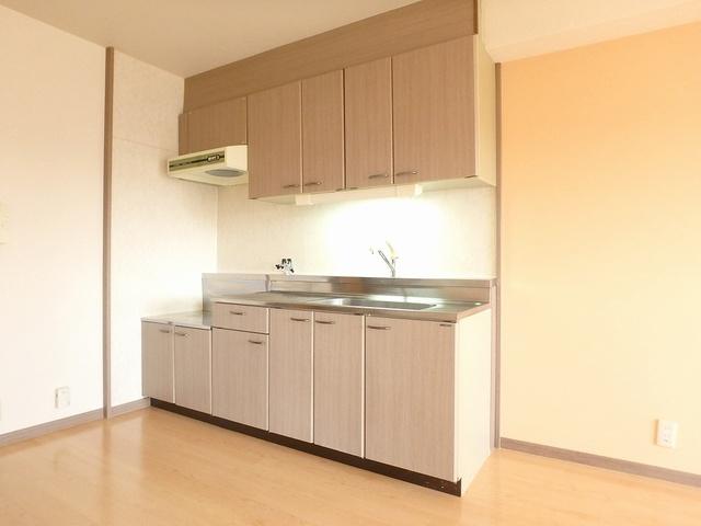 ホワイトヴィラ / 405号室キッチン