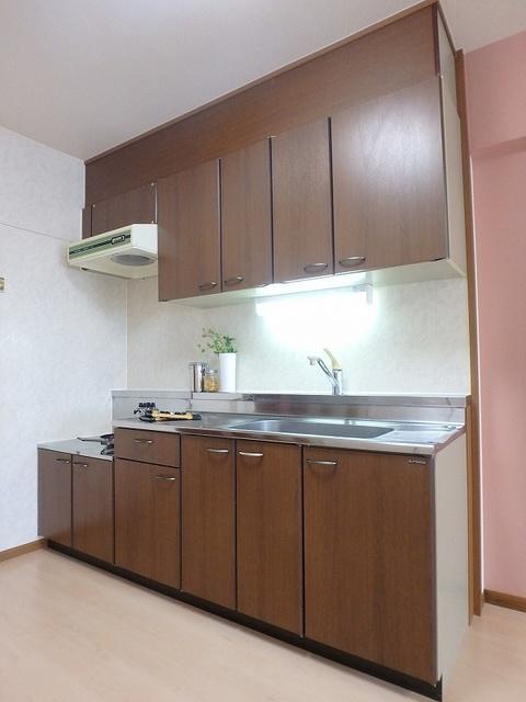グレースマンション大野城 / 201号室キッチン