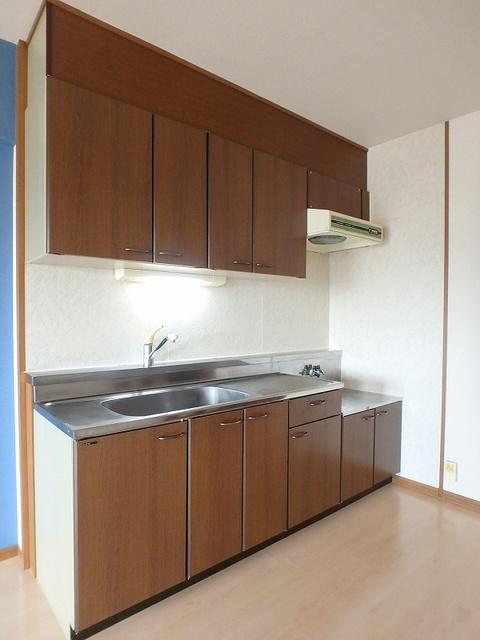 グレースマンション大野城 / 502号室キッチン