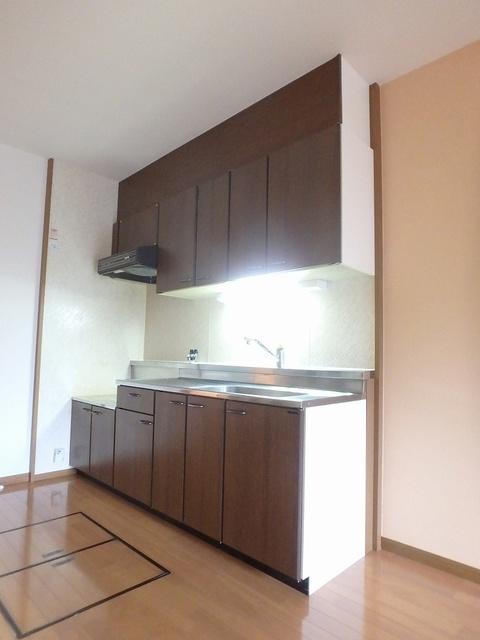 FIRENZE'95(フィレンツェ95) / 205号室キッチン