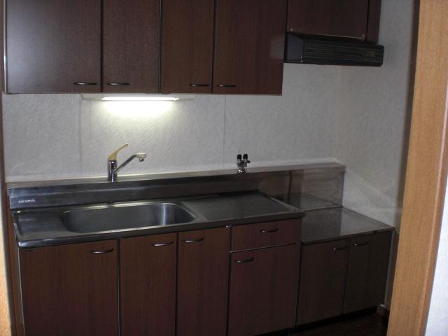 クレール東大利B / 302号室キッチン