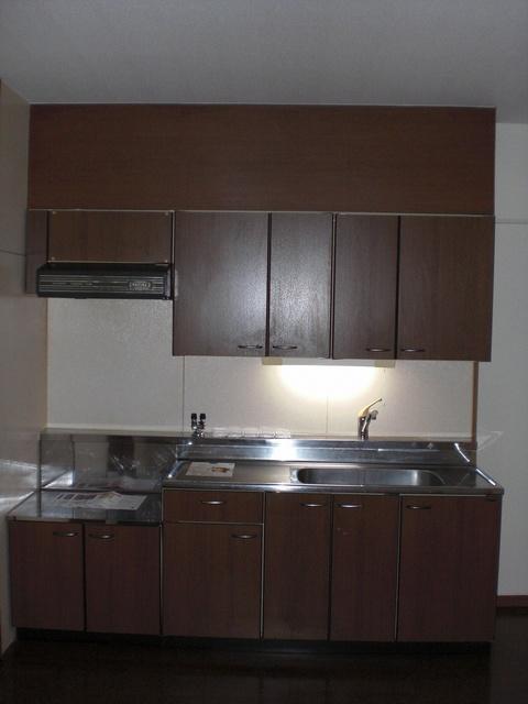 フェニックス大野城 / 102号室キッチン