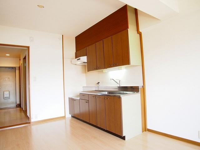 フェニックス大野城 / 301号室キッチン