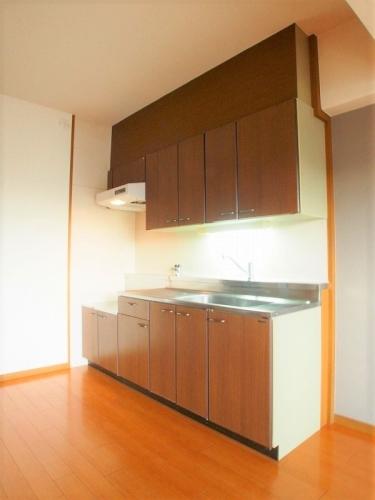 フェニックス大野城 / 403号室キッチン